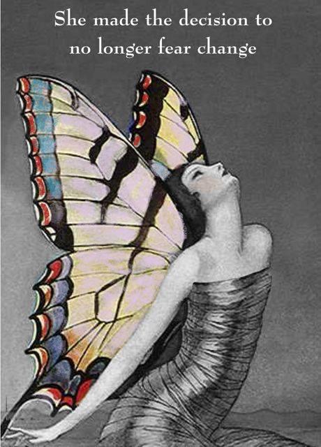 butterfly no fear